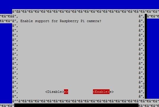 raspi-config camera enabled
