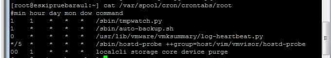 Lanzar fichero install.sh en servidor VMware ESXi 5