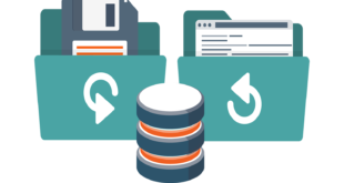 backup-base-de-datos-mysql-mariadb