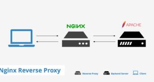 nginx-crear-proxy-inverso-en-centos-7-lxc